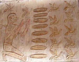 Un homme agenouillé devant des ruches placées horizontalement (tombe de Pabasa)