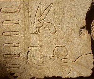 Des ruches, des pots et une abeille (tombe d'Anch'hor)