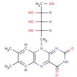 La vitamine B2 ou vitamine G