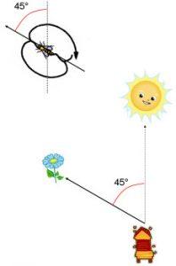 La danse oscillante à 45° par rapport au soleil